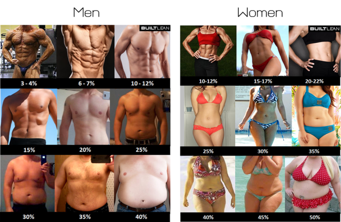 Bodyfat Percentages: A Visual Guide